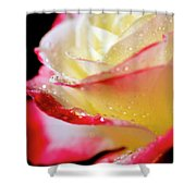 A Kiss Of Dew Shower Curtain