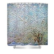 A Late Winter Xv Shower Curtain