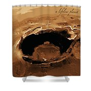 A Lifeless Planet Brown Shower Curtain by ISAW Company