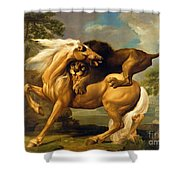 A Lion Attacking A Horse Shower Curtain