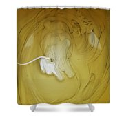 A Lion, But Not In Africa... Shower Curtain
