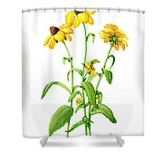 A Little Bit Of Sunshine Shower Curtain