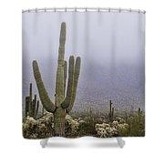 A Little Desert Fog  Shower Curtain