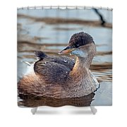 A Little Grebe Shower Curtain