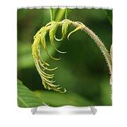A Little Greenery Shower Curtain