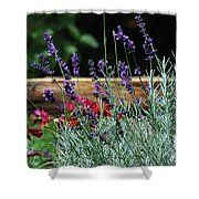 A Little Lavender Shower Curtain