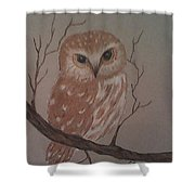A Little Owl Shower Curtain by Ginny Youngblood