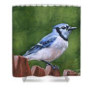 A Little Piece Of Sky Shower Curtain by Brandy Woods