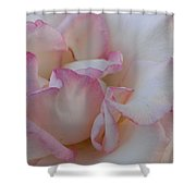 A Little Pink Around The Edges Shower Curtain
