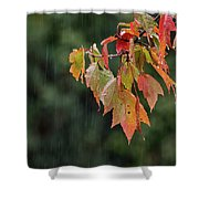 A Little Rain Must Fall Shower Curtain