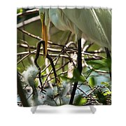 A Lively Lunch Shower Curtain