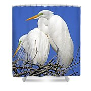 A Loving Couple Shower Curtain