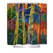 A Magical Forest Shower Curtain