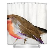 A Magical Little Robin Called Wisp Shower Curtain