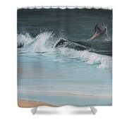 A Magical Moment Shower Curtain