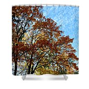A Magnificent Fall Day Shower Curtain