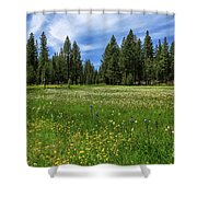 A Meadow In Lassen County Shower Curtain