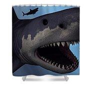 A Megalodon Shark From The Cenozoic Era Shower Curtain