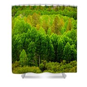A Moment Of Green Shower Curtain