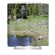 A Moose In The Rockies Shower Curtain