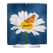 A Moth Collects Pollen On A Single Daisy Blossom. Shower Curtain
