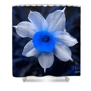 A Narcissist Star Shower Curtain