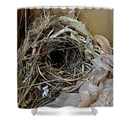 A Nest In A Box Shower Curtain