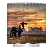 A New Day The Iron Horse Shower Curtain