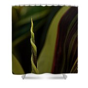 A New Leaf Is Born Shower Curtain