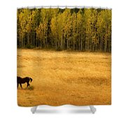 A Nice Autumn Day Shower Curtain by James BO  Insogna