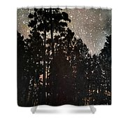 The Forest Night Shower Curtain