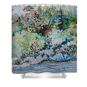 A Northern Shoreline Shower Curtain