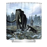 A Pack Of Dire Wolves Crosses Paths Shower Curtain