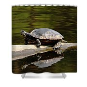 A Painted Reflection Shower Curtain