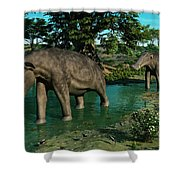 A Pair Of Platybelodon Grazing Shower Curtain
