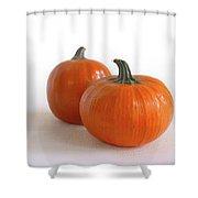 A Pair Of Pumpkins Shower Curtain