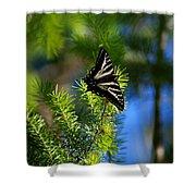 A Pale Swallowtail Vertical Shower Curtain
