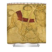 A Partially Coloured Drawing Of A Strutting Camel Shower Curtain