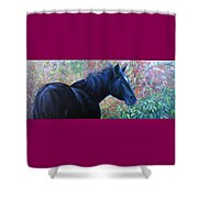 A Passing Glance From Hero Shower Curtain