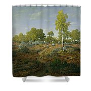 A Path Among The Rocks Shower Curtain