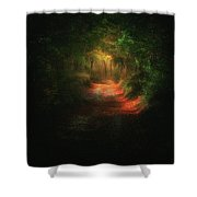 A Path In The Dark Shower Curtain