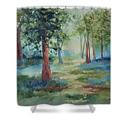A Path Not Taken Shower Curtain