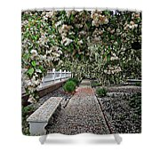 A Path Of Petals Shower Curtain