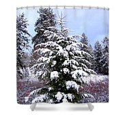 A Peaceful Winter Day Shower Curtain
