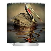 A Pelican And His Reflection Shower Curtain