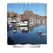 A Pelican Lands In The Old San Carlos Marina, Guaymas, Sonora, M Shower Curtain