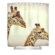 A Perfect Pair- Masai Giraffe Shower Curtain