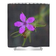 A Perky Little Blossom  Shower Curtain