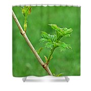 A Perpetual Astonishment Shower Curtain