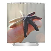A Person Holds A Tiny Starfish Sea Star On Its Fingertip Of The Index Finger. Shower Curtain